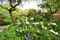 England - Old Buckhurst