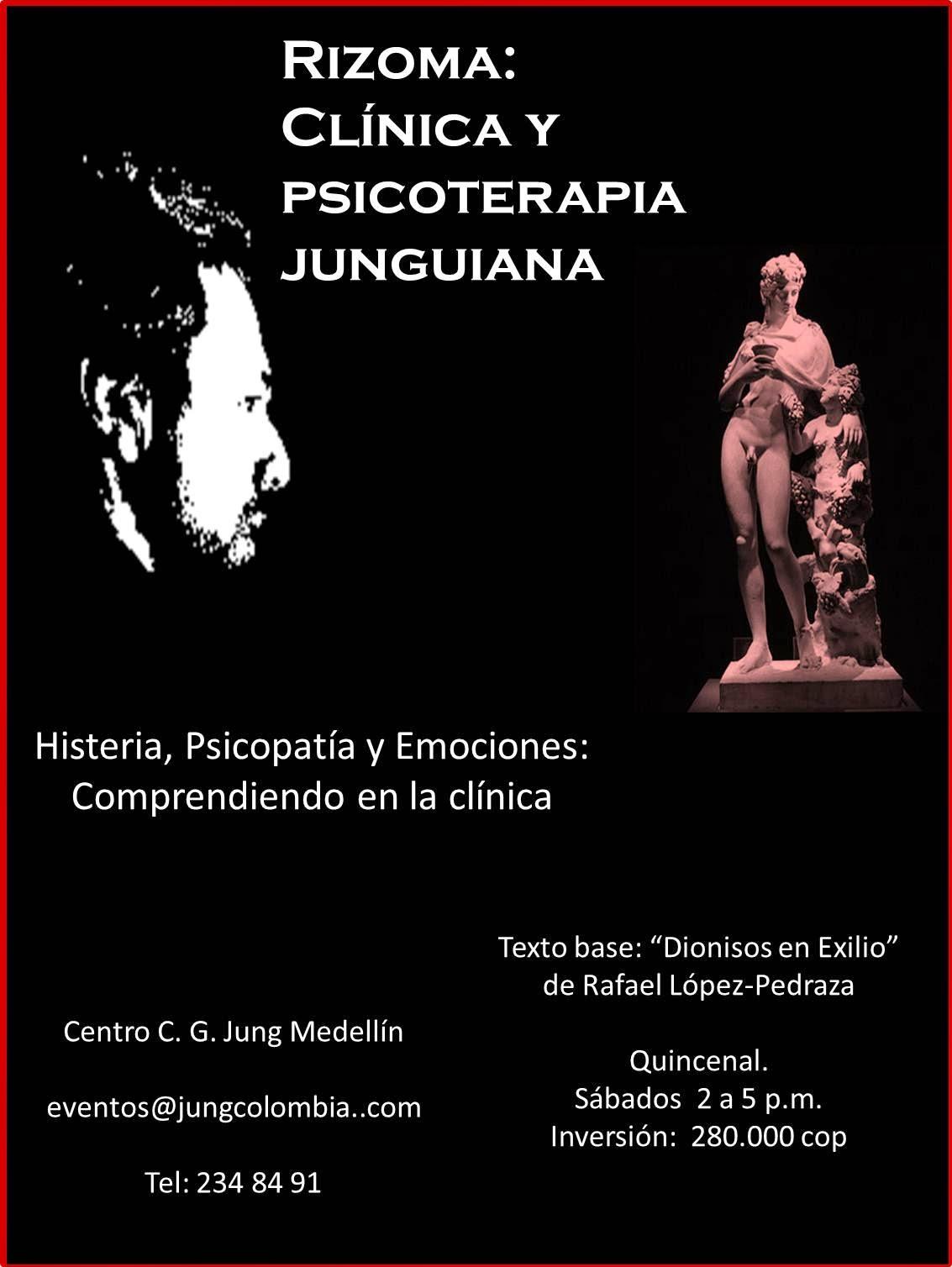 Curso: Clínica y psicoterapia junguiana