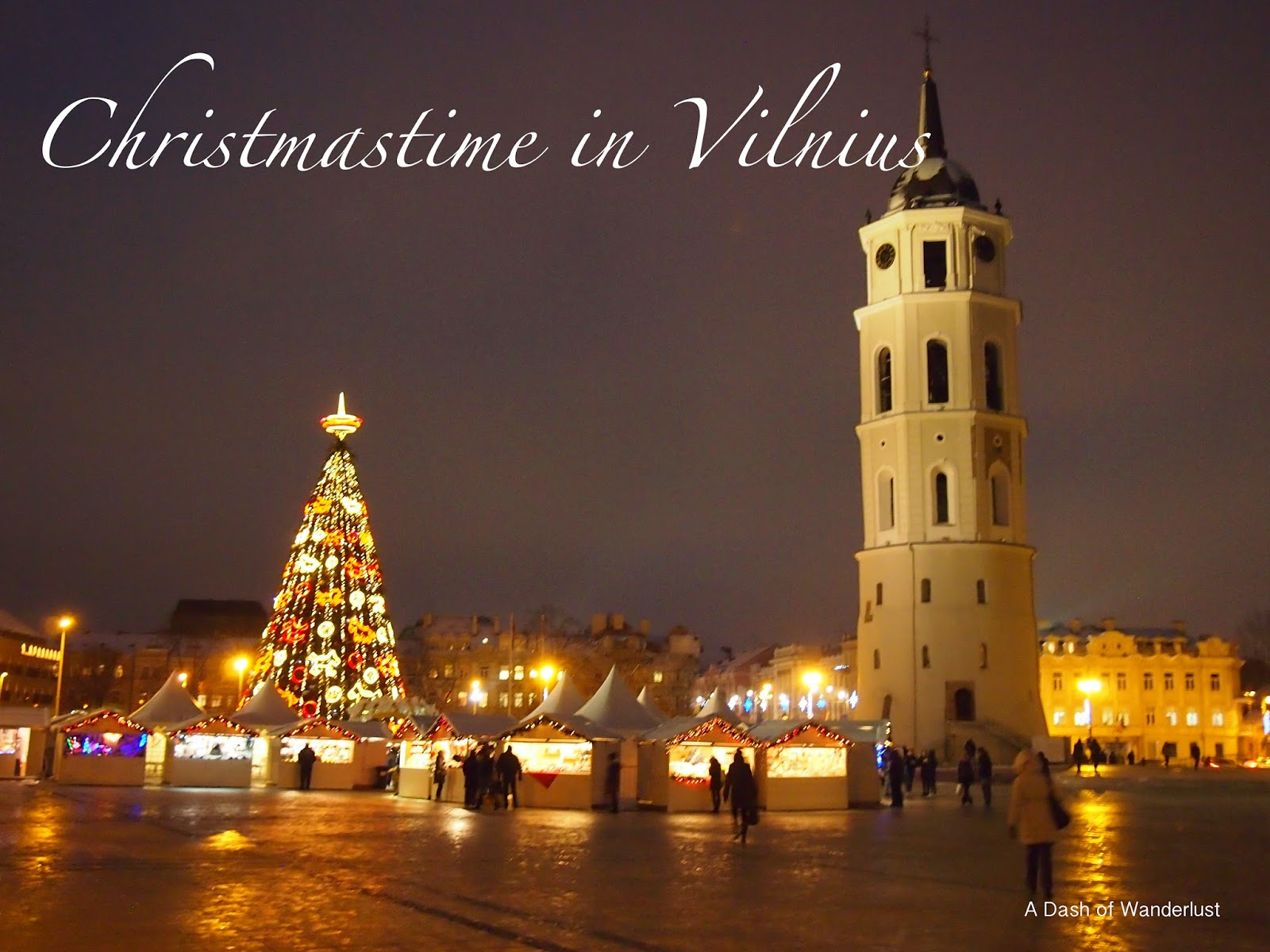 Christmas town and christmas tree in Cathedral Square, Vilnius, Lithuania