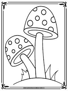 gambar jamur untuk diwarnai anak tk