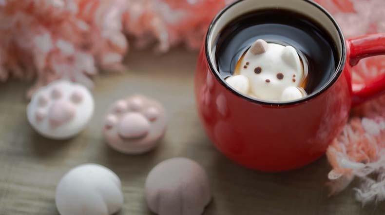 Lindos gatitos de malvavisco flotado y disolviendose dentro de tazas de café