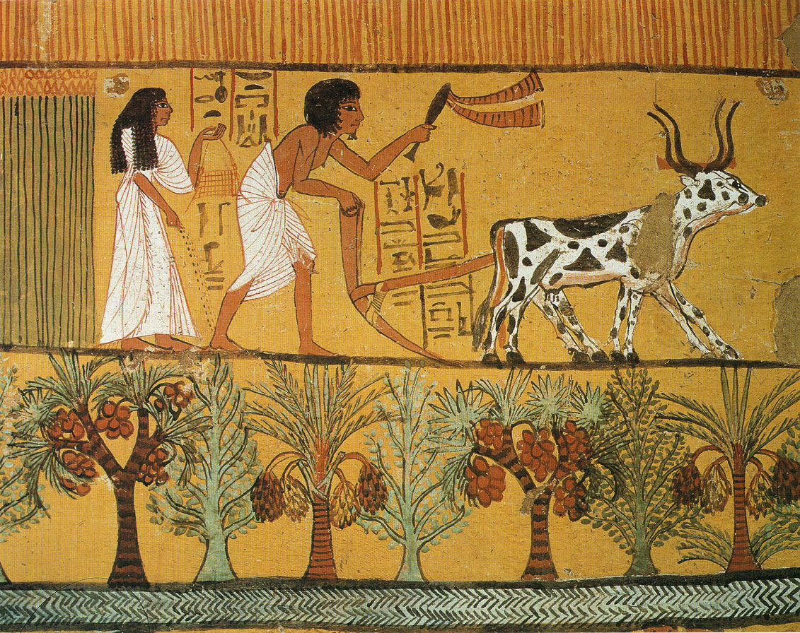 What is a tax in ancient Egypt Definition, value 5