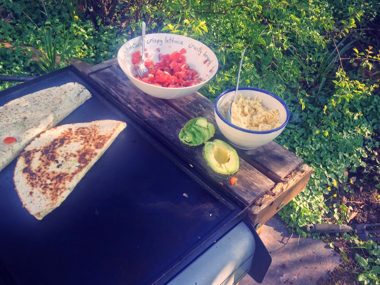 summer, barbecue, quesadilla, avocado, fresh salsa, recipe, mexican
