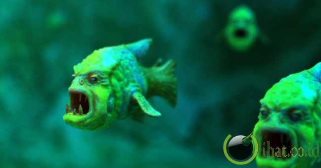 Ikan Berkerut