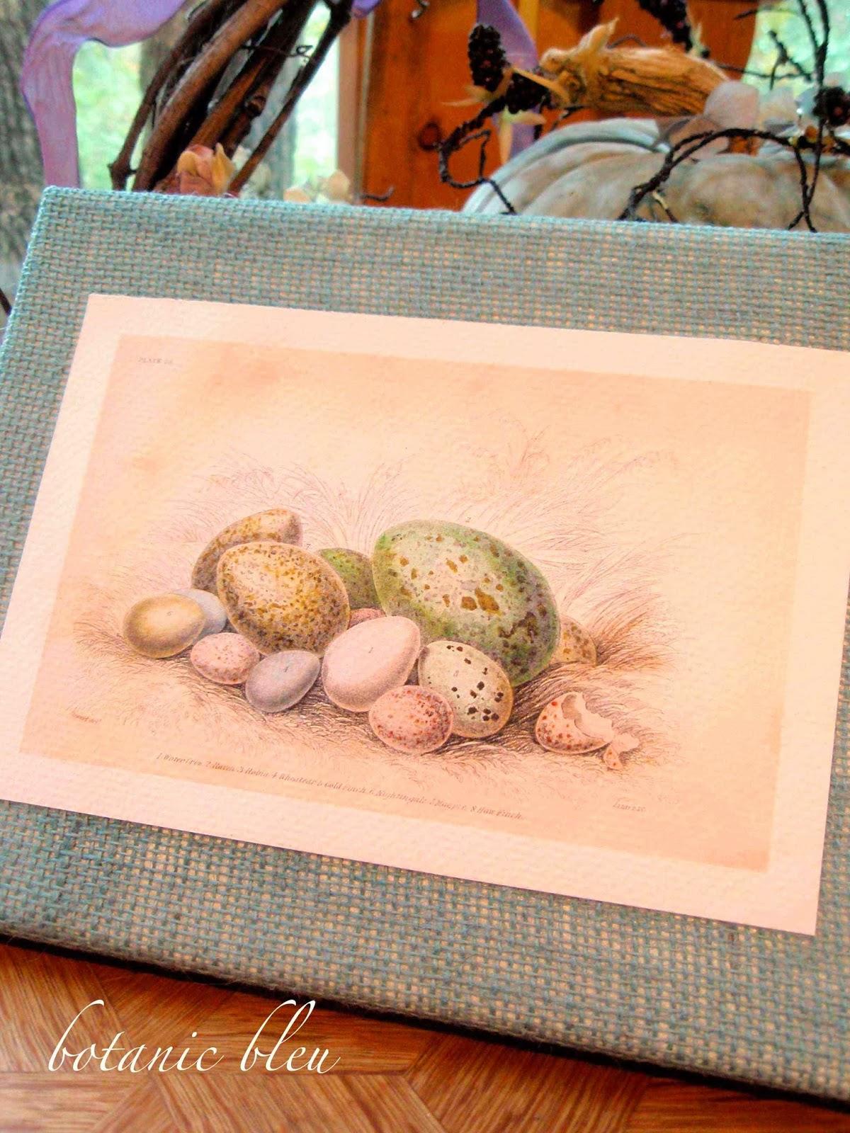 botanic bleu burlap canvas egg prints
