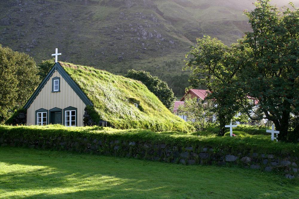 Làm mát ngôi nhà bằng cây leo quanh nhà