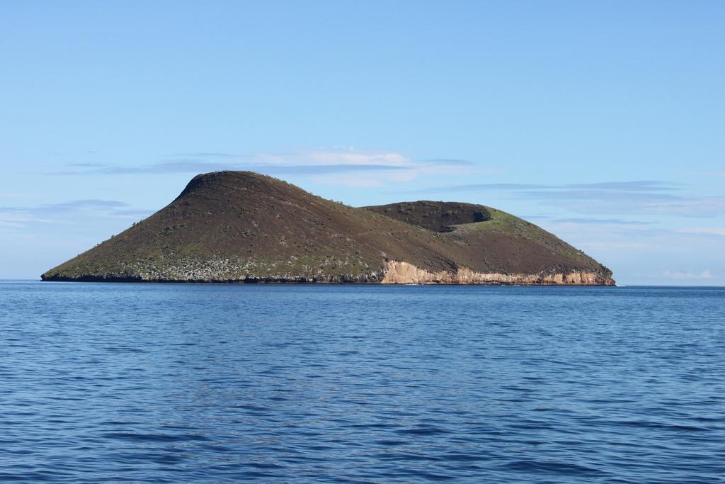 New Daphne Galapagos Islands