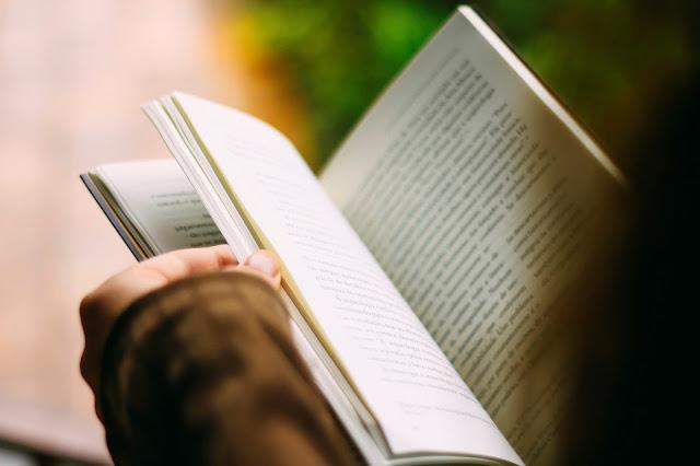Rywalki. Książka o miłości, księciu i koronie.