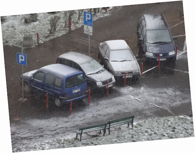 Ksawery z Mikołajem przyprowadził zimę na Witolin