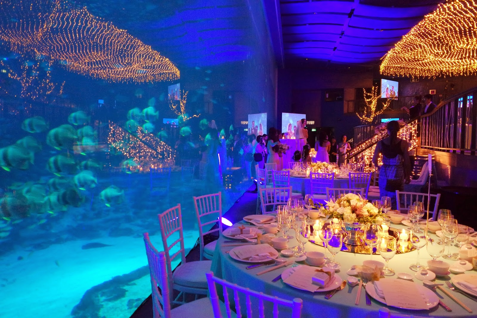 Why You Should Hold Your Wedding The Sea Aquarium In