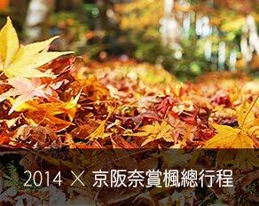 November 19st-29st, 2014