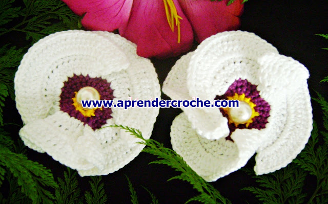 flores em croche papoulas aprender croche com edinir-croche dvd curso de croche
