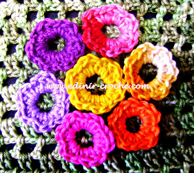 flores em croche 5 volumes dvd da coleção aprendi e ensinei com Edinir-Croche