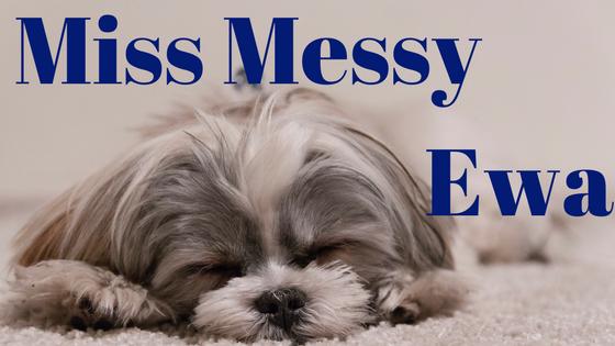 Miss Messy Ewa