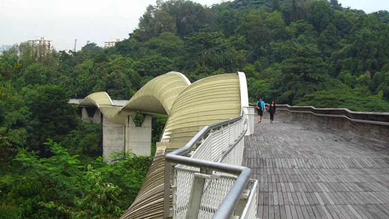 Henderson Waves Bridge, Singapore