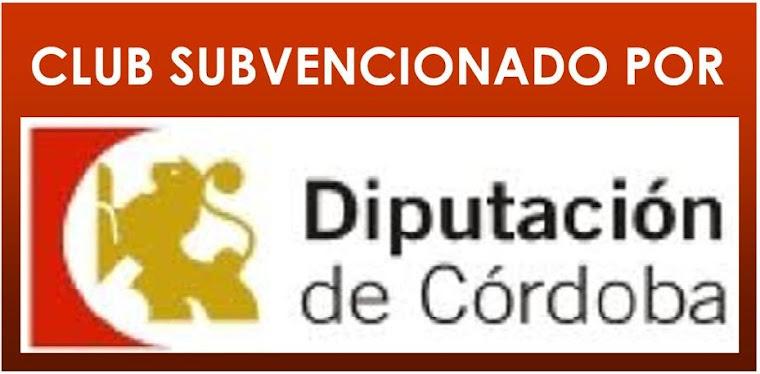 DIPUTACION DE CORDOBA