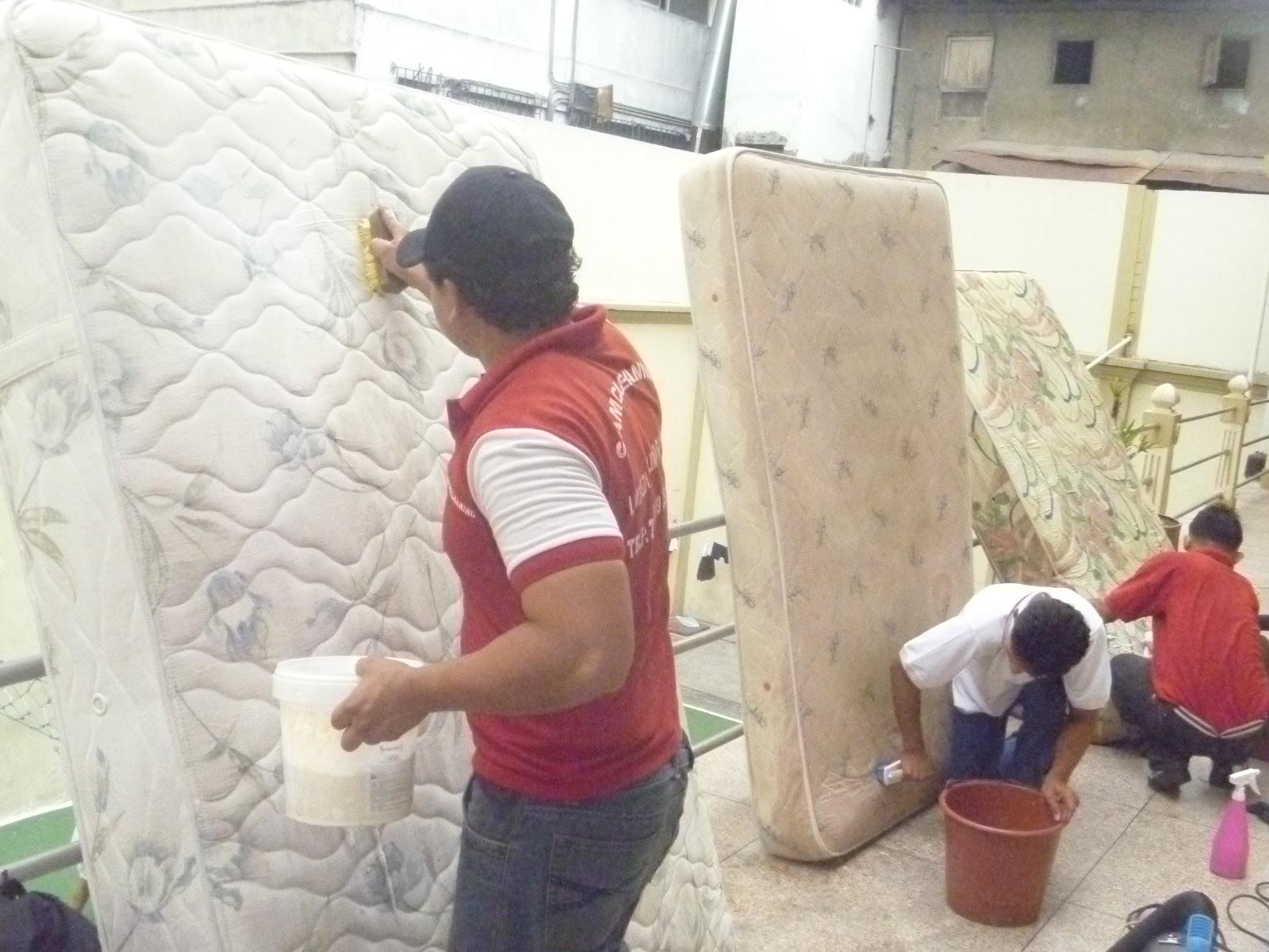 Como limpiar alfombras en seco with como limpiar for Jabon neutro para limpiar muebles