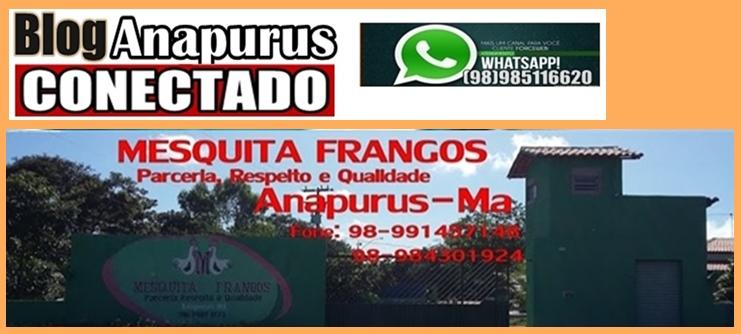 BLOG ANAPURUS CONECTADO - Noticias do Maranhão e Região