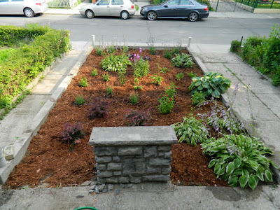 Garden cleanup Bloordale after Paul Jung Gardening Services Toronto