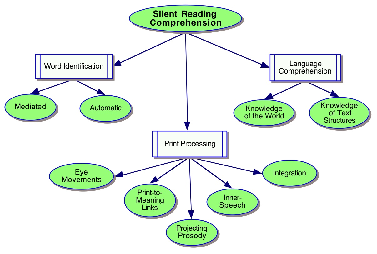 Reading Skills Ladder
