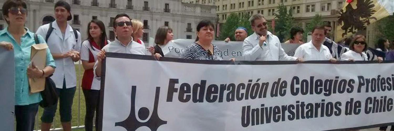 Foro sobre el rol de los Colegios Profesionales en Chile