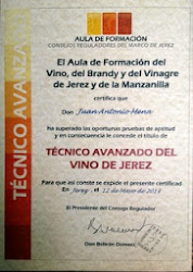 TÉCNICO AVANZADO DEL VINO DE JEREZ