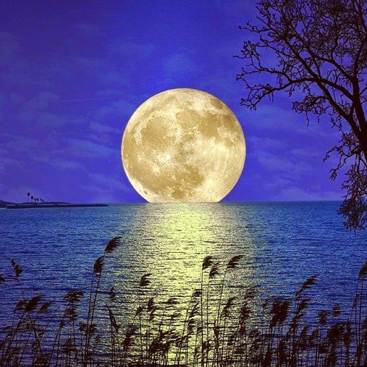 Awesome moon on water reflection