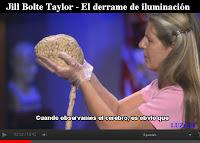 Jill-Bolte-Taylor-Derrame-de-Iluminacion-Derrame-Cerebral-Sintomas-ICTUS