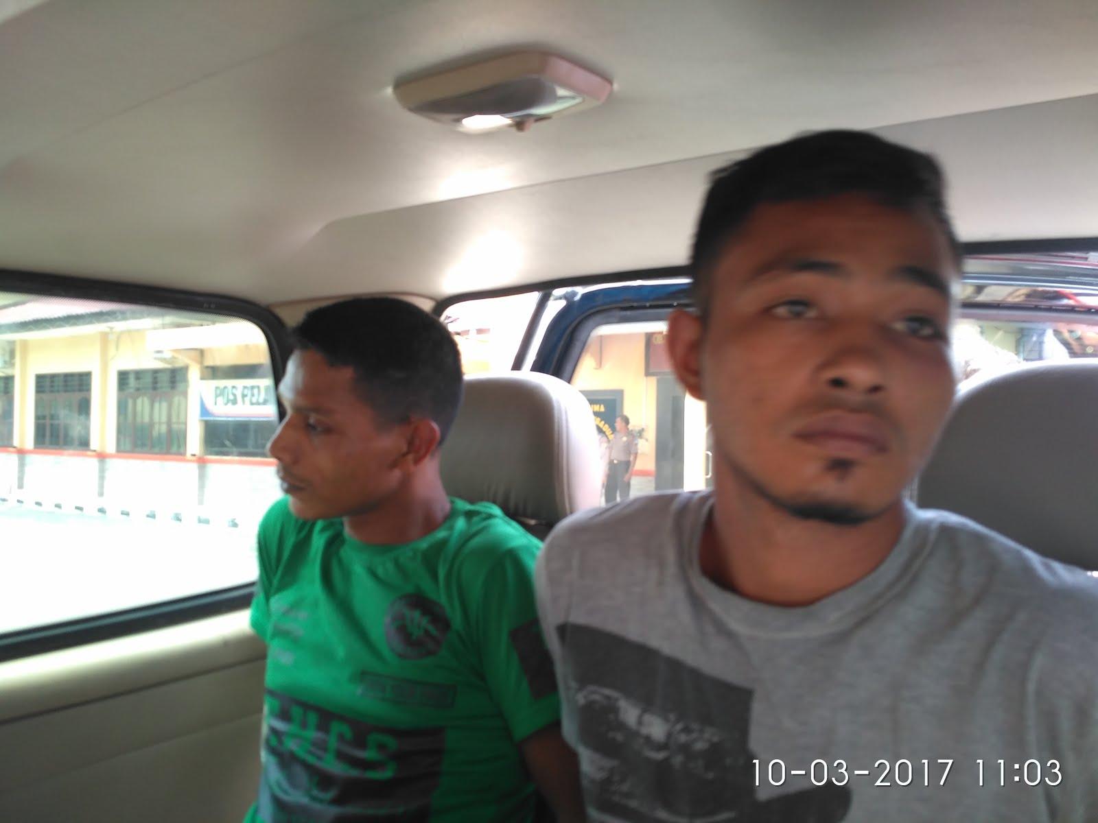 Kurir dan Pemesan 11 Kg Ganja Kering Ditangkap Polres Labuhanbatu