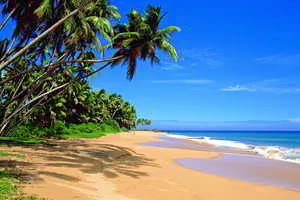 Playa en los sueños