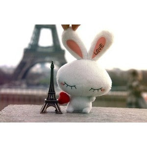 See the Bunny. She was sad as it seems like my feeling '-')/