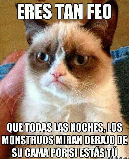 Grumpy Cat - El gato gruñón: 'Eres tan feo...'