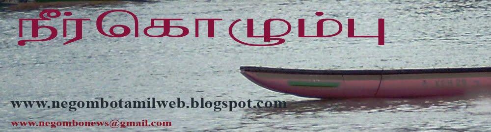 Negombo Tamil Web