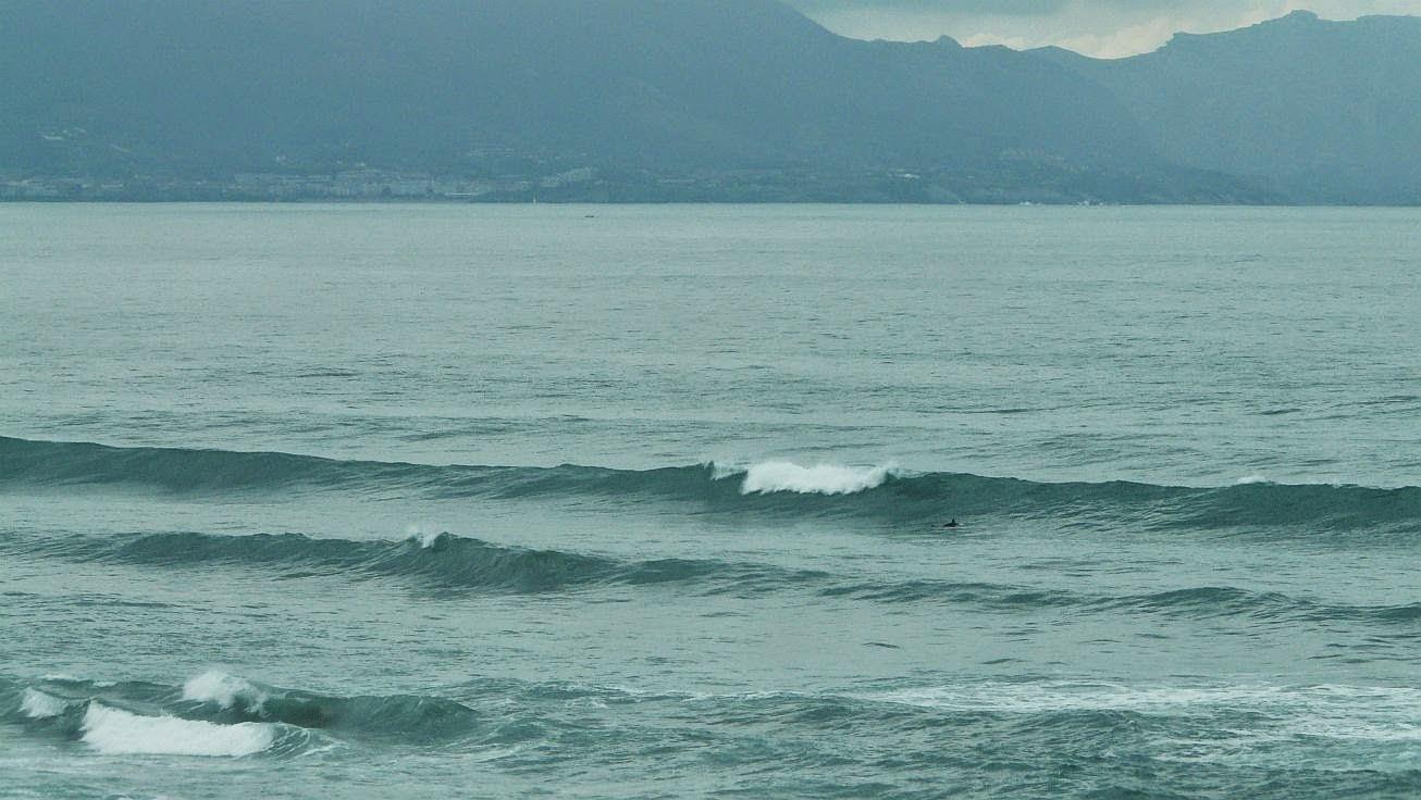 surfing sopela 01