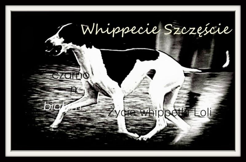 Whippecie Szczęście