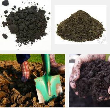 Humus soil conditioning