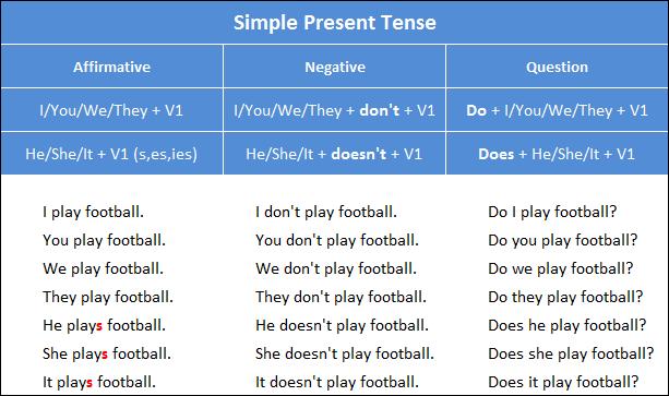 Simple Present Tense Özkan Çelen