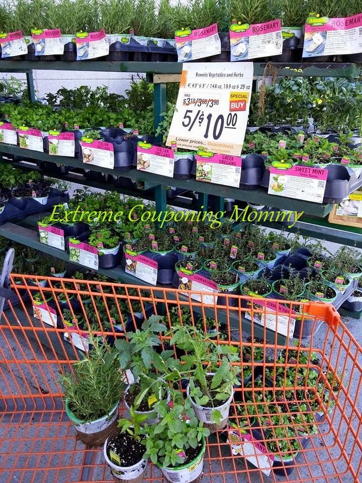 Extreme Couponing Mommy Home Depot Garden Club