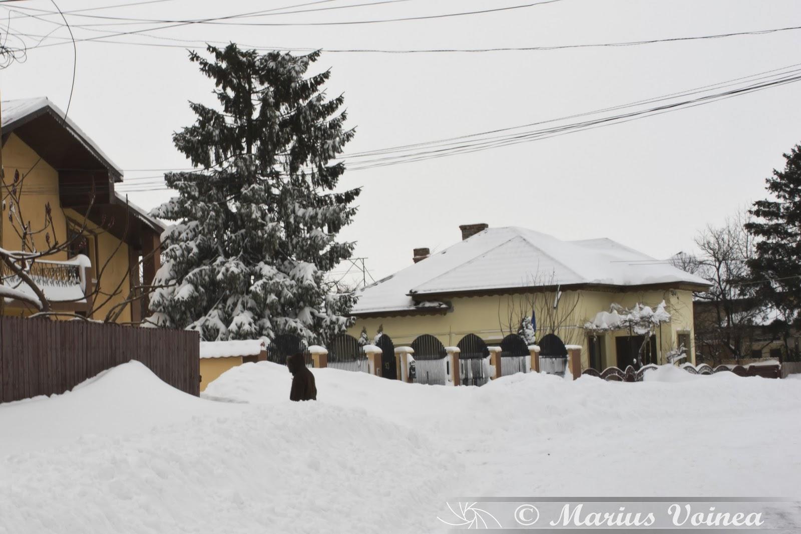 iarna la ramnicu sarat, 2014 foto 1