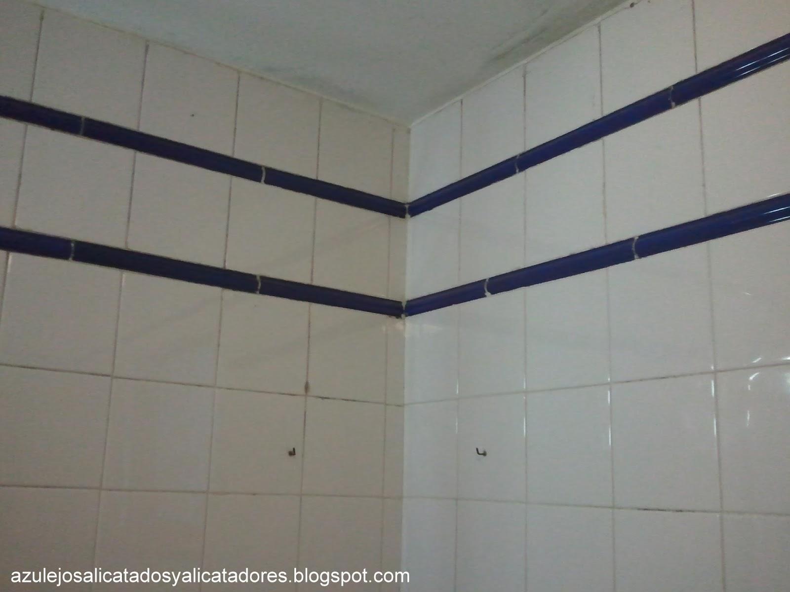 Baño Azul Con Blanco:los azulejos es 15×15 cm en color blanco brillo, con listelos azules