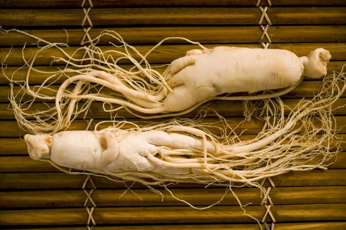 Chinese Ginseng (Panax Ginseng) Overview, Health Benefits, Side effects