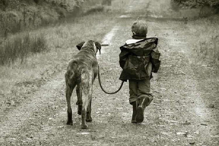 Πώς η κατοχή ενός σκύλου ευνοεί τη σωματική και ψυχική υγεία του ανθρώπου