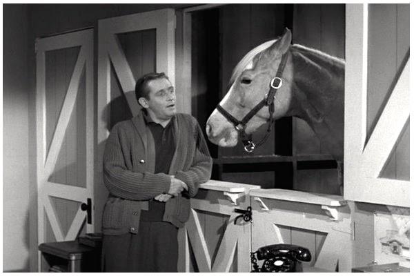 Two Men And A Little Farm Dutch Door Inspiration Thursday