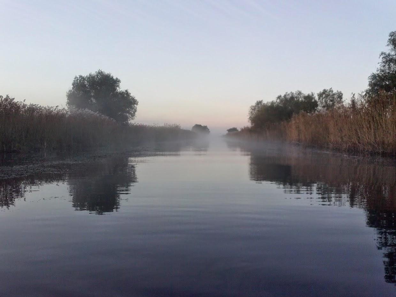 Delta Dunării - canalul Busurca