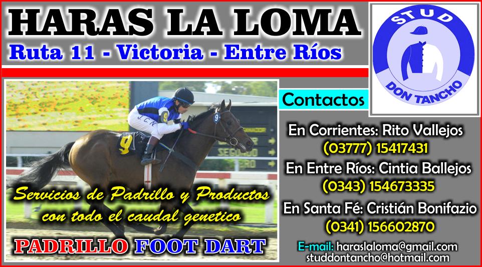 HARAS LA LOMA -  20.04.2015
