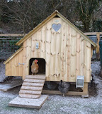 Our Henhouse and ALL things 'chicken' come from Flyte So Fancy.