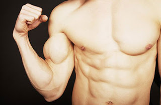 muscle strength vs size