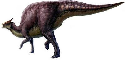 Fosil Bayi Dinosaurus ditemukan di Sarang Makam Naga