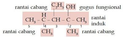 rantai cabang induk gugus fungsional 3-etil-2,4-dimetil-2- pentanol