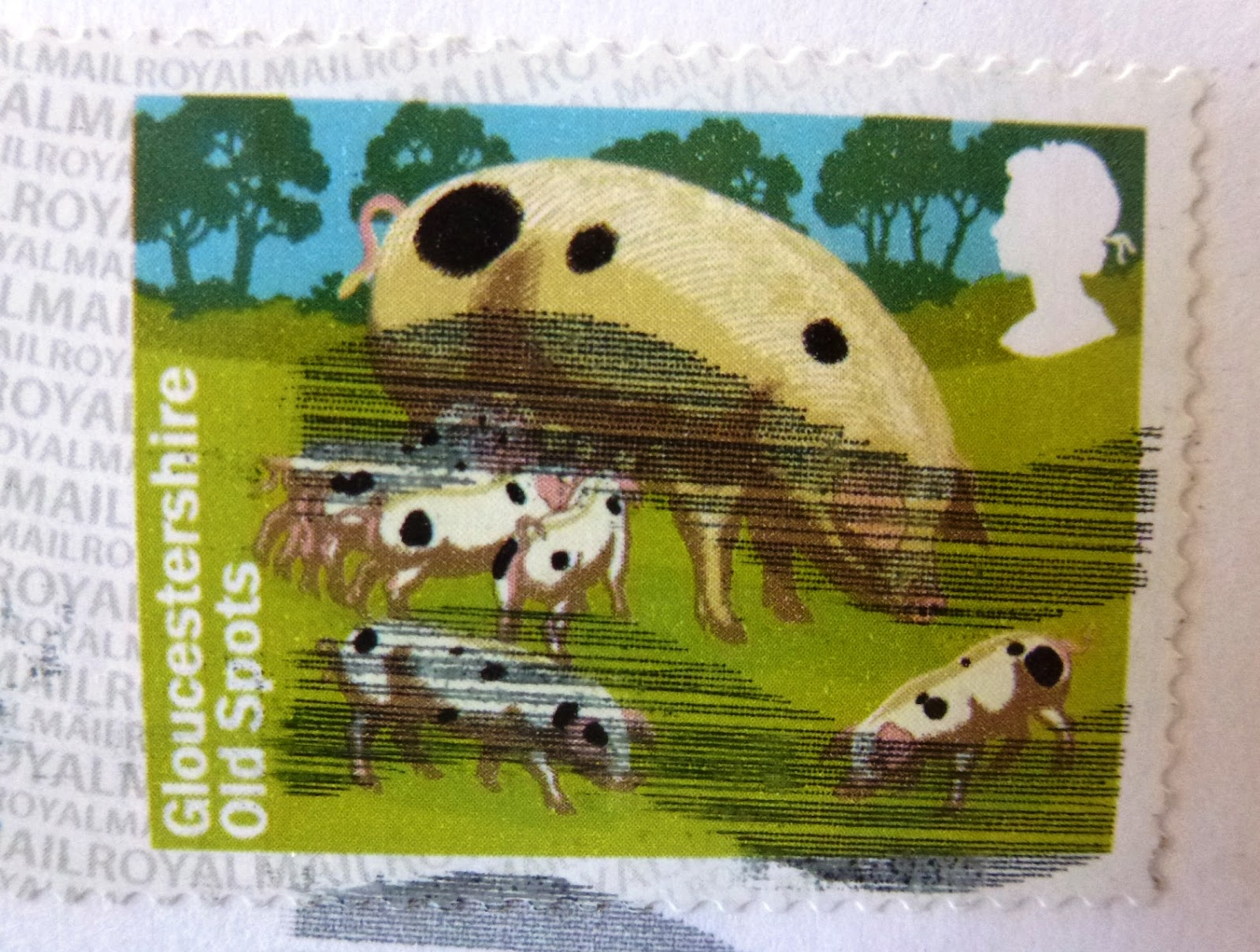 francobollo Royal Mail Glouchestershire Old Spots
